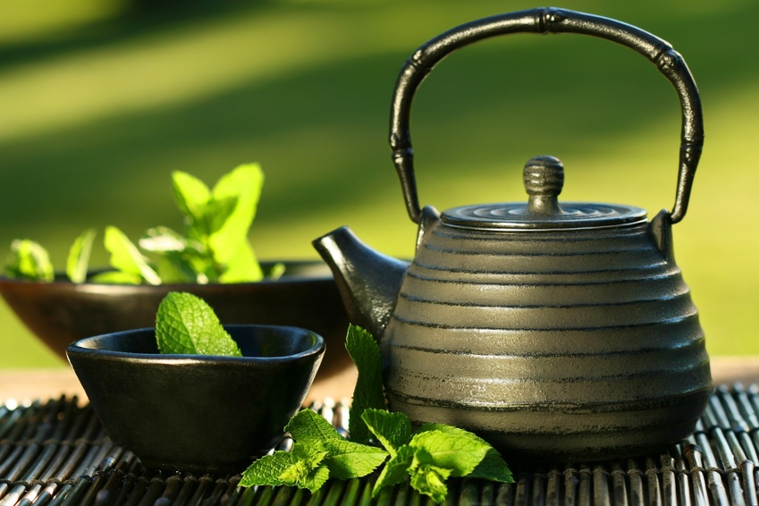 green tea Supplements for Female Fat Loss Over 40